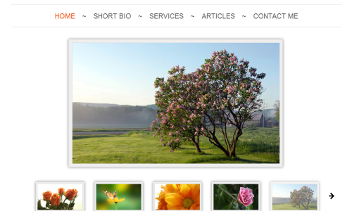 rikona 20 Free Html Template with Image Slider   Gallery Slider