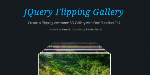 Flipping Gallery by Pete R