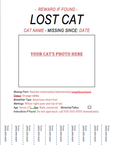 Lost Cat Flyer