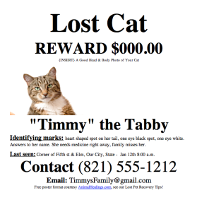 Lost Cat or Missing Cat Poster Template