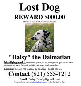Lost Dog or Missing Dog Poster Templat