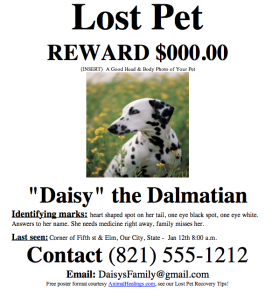 Lost Pet or Missing Pet Poster Template